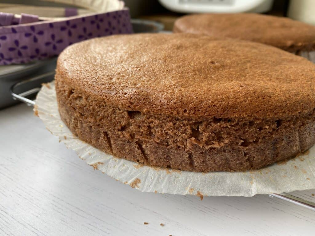 Side view of a baked chocolate cake