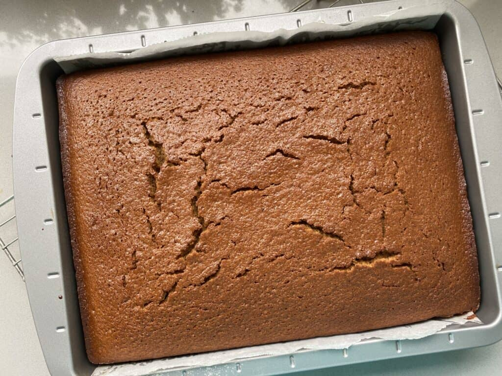 Baked Gingerbread Cake in a baking tin