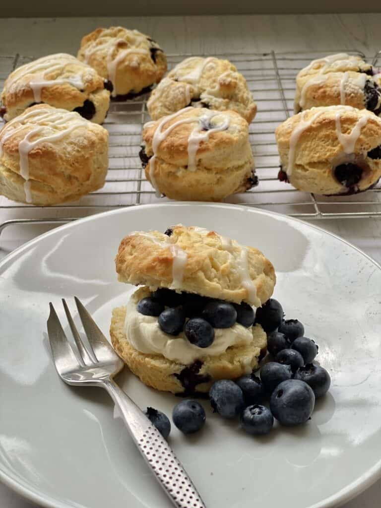 Blueberry scone with fresh fruit and cream on a white plate